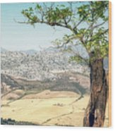 View From Ronda Spain Wood Print