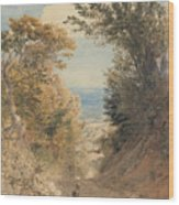 View From Rook's Hill, Kent Wood Print