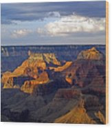 View From South Rim Wood Print