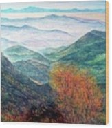 View From The Autumnal Belchen   Wood Print