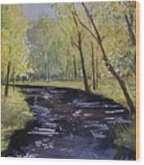View From The Covered Bridge Wood Print
