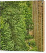 View From The Lllangollen Aqueduct In Wales Wood Print