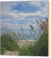View From The Outer Banks Dunes Wood Print