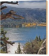 View From The Top Of June Lake Wood Print