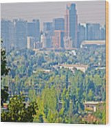 View From Wealthy Neighborhood In Hills Of Santiago-chile Wood Print