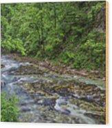 View In Vintgar Gorge - Slovenia Wood Print