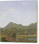 View Near Naples Wood Print