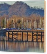 View Of A Bridge Wood Print