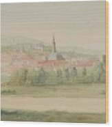 View Of A Town In Saxony Wood Print