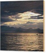 View Of Alaska Wood Print
