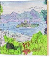 View Of Alcatraz Wood Print