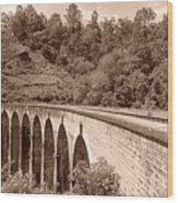 View Of Ancient Bridge Wood Print