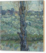 View Of Arles, Flowering Orchards Wood Print