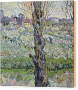 View Of Arles Wood Print