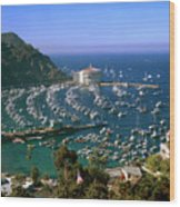 View Of Avalon Harbor Wood Print
