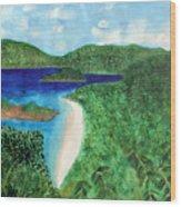 View Of Beach In St John Us Virgin Islands  Wood Print