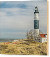 View  Of Big Sable Point Michigan Wood Print