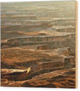 View Of Canyonlands Wood Print
