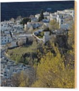 View Of Capileira Village In The Alpujarras Mountains In Andalusia Wood Print