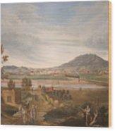 View Of El Paso Wood Print