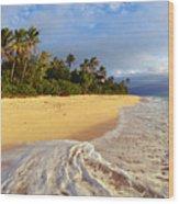 View Of Fiji Wood Print