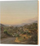 View Of Florence And The Hills Wood Print