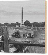View Of Gettysburg  Wood Print
