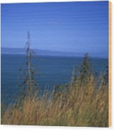 View Of Kachemak Bay, Alaska Wood Print