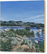View Of Lake Hemet Wood Print