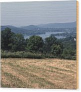 View Of Lake Waramaug Wood Print