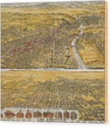 View Of Los Angeles, 1894 Wood Print