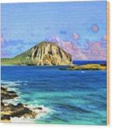 View Of Makapuu And Rabbit Island Wood Print