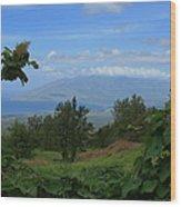 View Of Mauna Kahalewai West Maui From Keokea On The Western Slopes Of Haleakala Maui Hawaii Wood Print