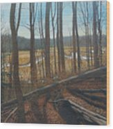View Of Parkers Creek Wood Print