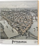 View Of Pittsburgh, 1902 Wood Print