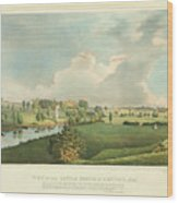 View Of The Battle Ground At Concord Mass Wood Print