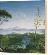View Of The Bay Of Pozzuoli Wood Print