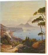 View Of The Gulf Of Naples Wood Print