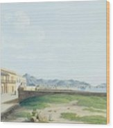View Of The Harbour And City Of Palermo Wood Print