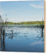 View Of The Lake Enajarvi Wood Print
