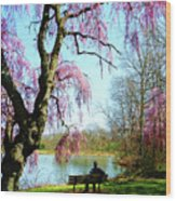 View Of The Lake In Spring Wood Print