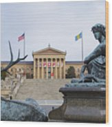 View Of The Museum Of Art In Philadelphia From The Parkway Wood Print