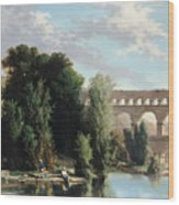 View Of The Pont Du Gard Wood Print