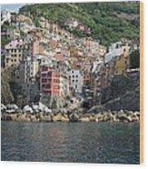 View Of The Riomaggiore, La Spezia Wood Print