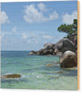 View Of The Sea And A Rocky Coastline Wood Print