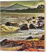 View Of The Sugarloaf Mountain From Killiney, 1b Wood Print