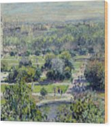 View Of The Tuileries Gardens Wood Print by Claude Monet