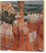 View Of Thor's Hammer In Bryce Canyon Wood Print by Pierre Leclerc Photography