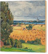 View Of Vadstena From The Surrounding Fields Wood Print