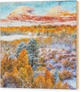 View Of Yosemite National Park Wood Print